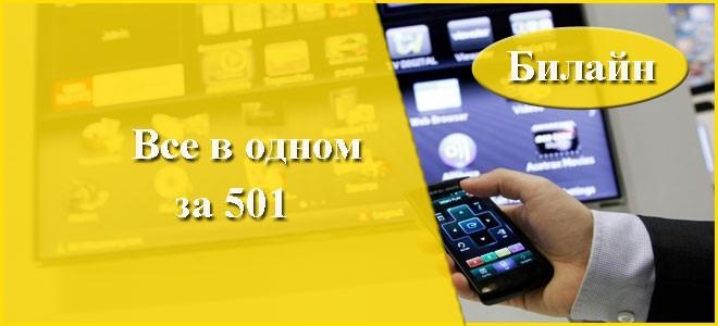 Многофункциональный тариф за 501 рубль